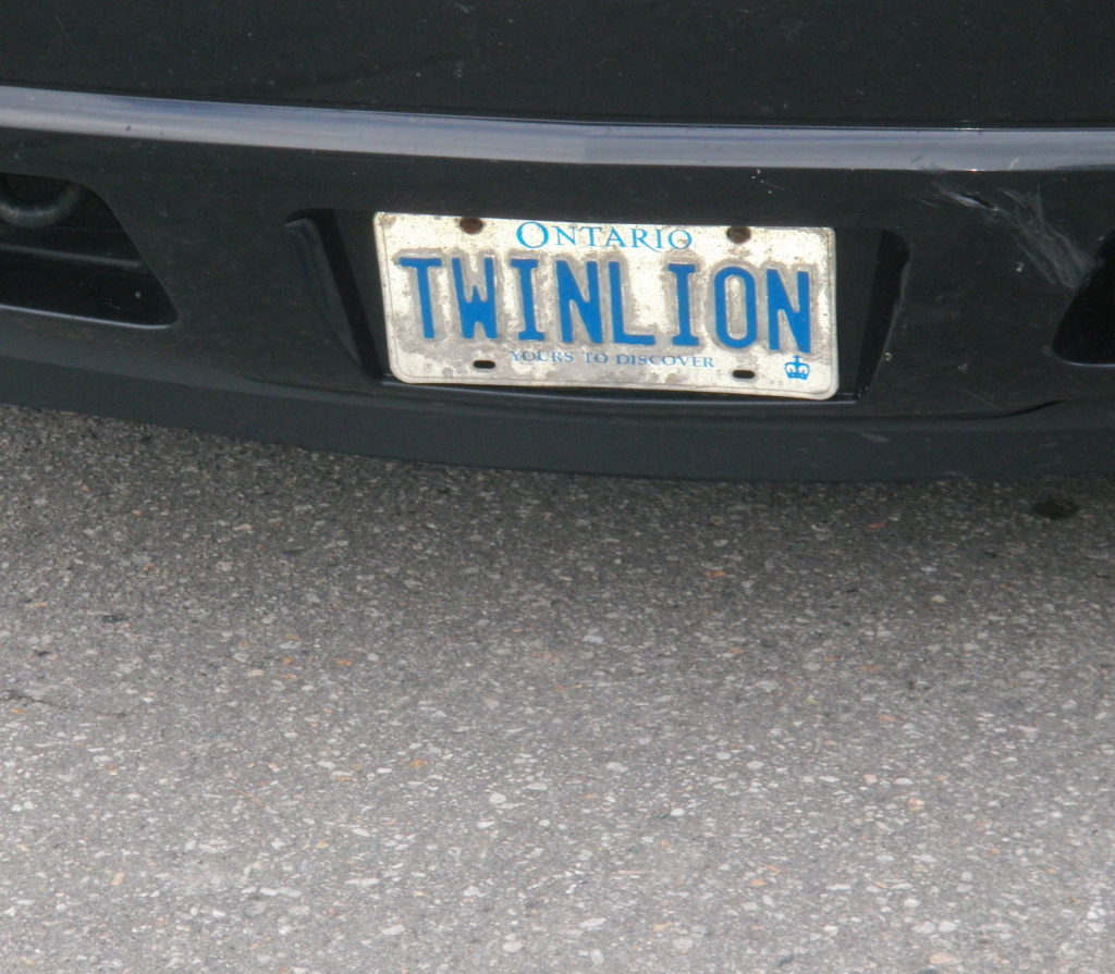 Twin Lions prowl parking lot in Port Hope