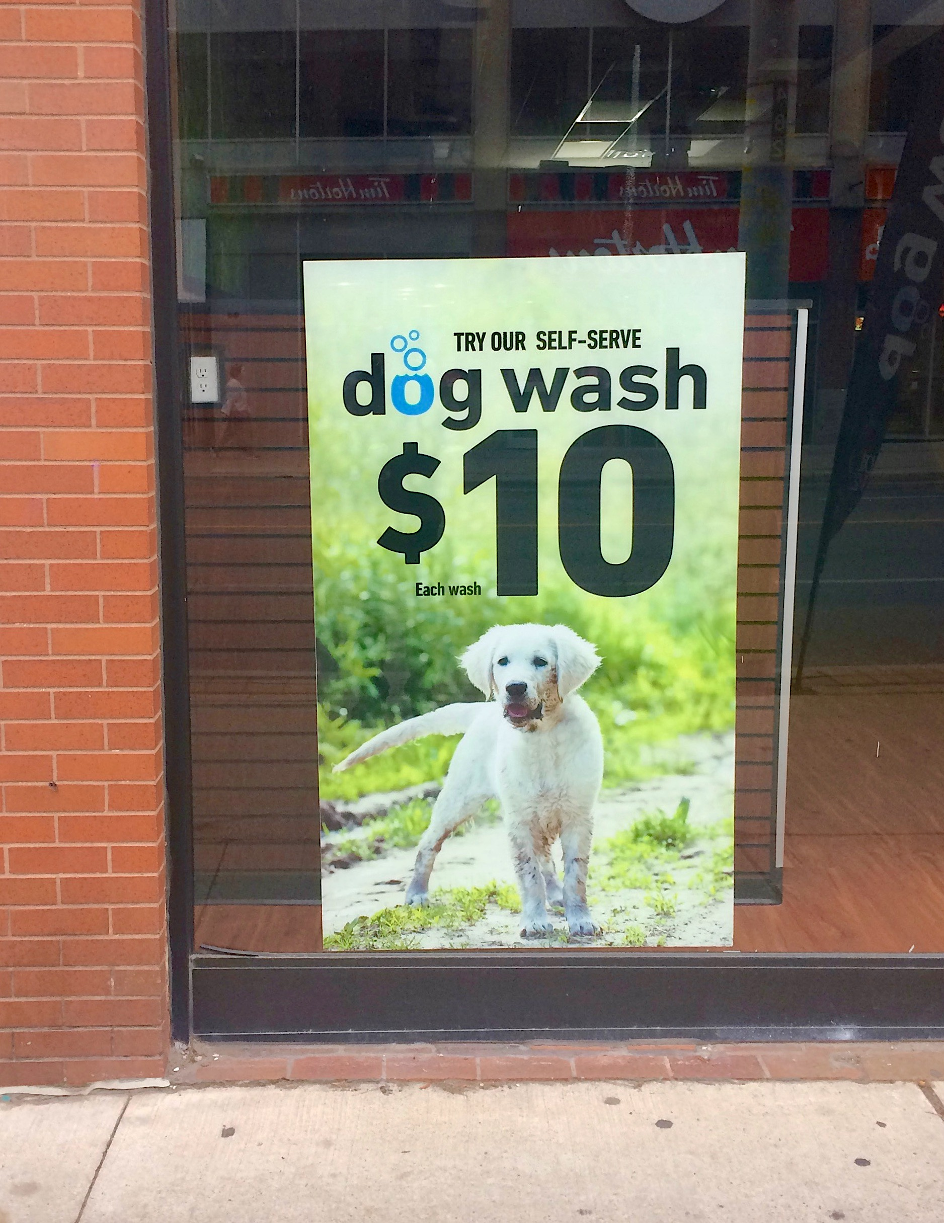 Tom Sawyer style dogwash